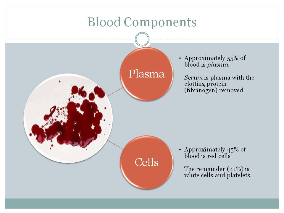 blood components testing and collection Up to four components can be derived from donated blood learn more about the different components of blood, including whole blood, red cells, platelets and plasma.